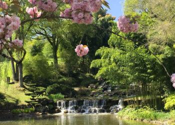 apremont-sur-allier-parc-floral-04