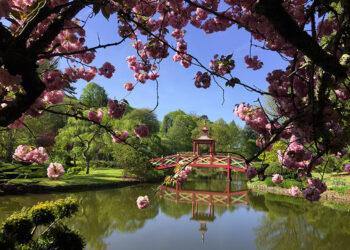 apremont-sur-allier-parc-floral